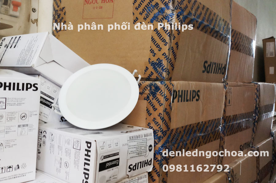 Den Am Tran Philips