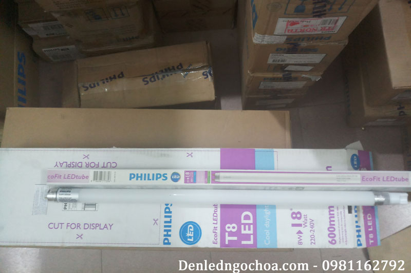 Bong Den Tuyp Led T8 Philips 8w